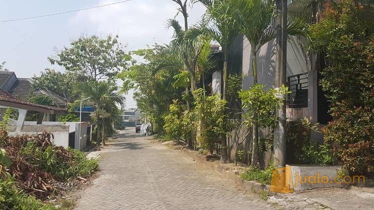 Tanah Cantik Dengan Lingkungan Apik (11181725) di Kota Semarang