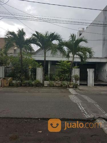 Rumah Siap Huni Row Jalan Lebar Di Pucang Kerep (13484031) di Kota Surabaya