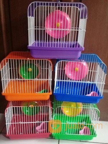 Kandang Untuk Hamster / Hwan Kecil (14446045) di Kota Tangerang Selatan