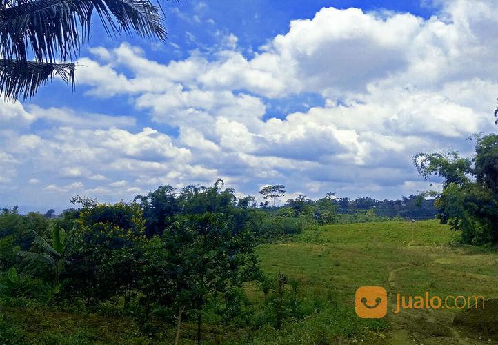 Kavling Edelweis, Dekat Kampus Uin Malang, Tinggal 1 Unit (14663957) di Kota Malang