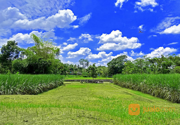 Tanah kavling strateg tanah dijual 14687795