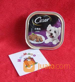 Makanan Anjing Cesar Lamb 100gr Dog Food Tangerang Jualo