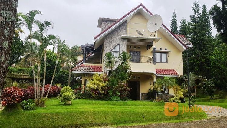 Vila Elit Ada Kolam Renang Lokasi Strategis Dekat Wisata (14824349) di Kota Batu