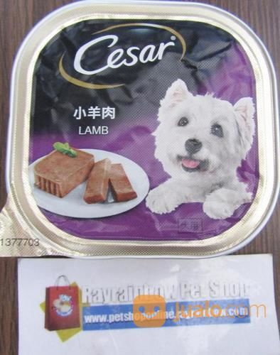 Cesar Lamb Dog Food Makanan Anjing Tangerang Jualo