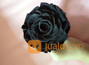 Preserved Flower Rose Mawar Hitam Abadi Souvenir Hadiah Kado Pacar