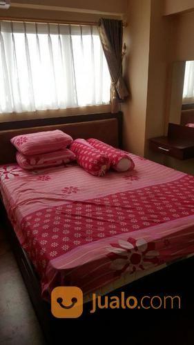 Apartemen sentra timu apartemen disewa 14855185