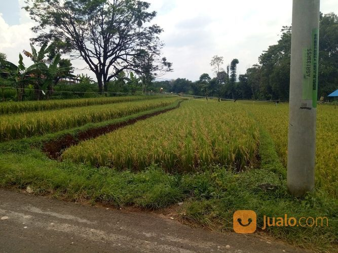 Sawah Dan Kebun Luas Pinggir Jalan (15098793) di Kab. Bandung Barat