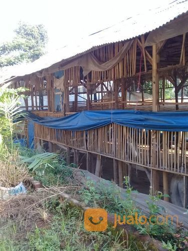 Tanah Kiss Dan Kandang Ayam Piggies Jalan Besar (15123209) di Kota Bandung