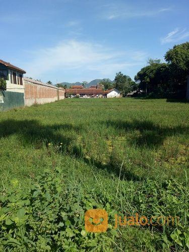 Sawah luas pinggir ja tanah dijual 15200201
