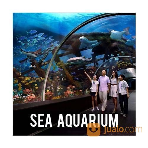 Sea Aquarium Singapore Eticket Anak (15235497) di Kota Surabaya