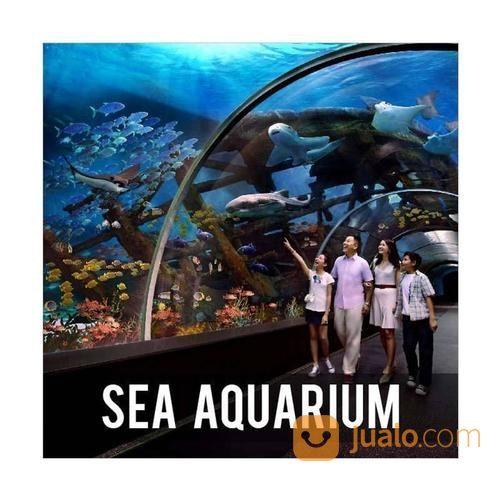 Sea Aquarium Singapore E-Ticket (SENIOR) (15252061) di Kota Surabaya