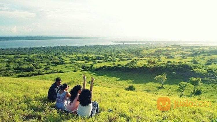 Open Trip Wakatobi (16770479) di Kota Depok