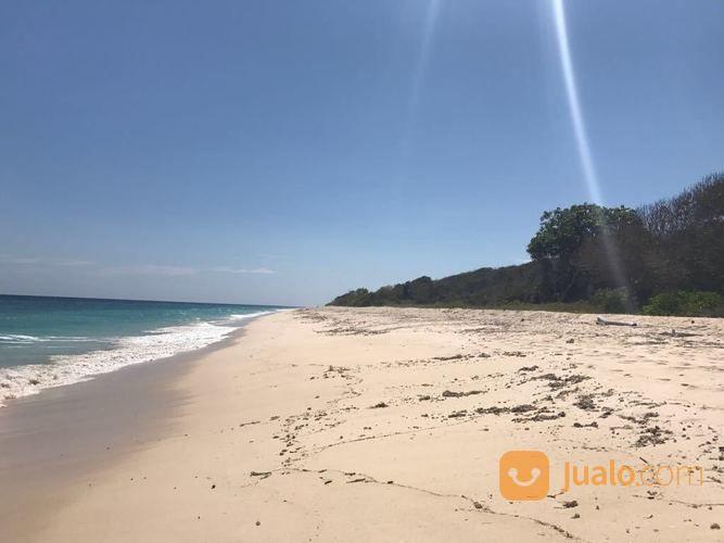 Tanah Loss Pantai Kita-Mananga Aba.Loura.Sumba Barat Daya.Nusa Tenggara Timur. (16809927) di Kab. Sumba Barat Daya
