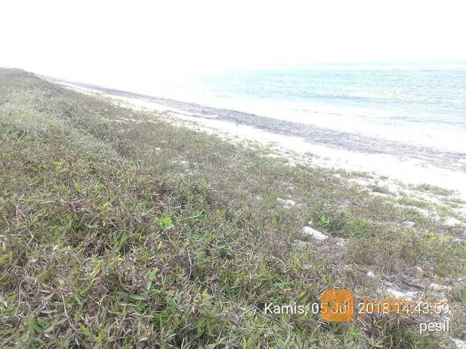 Tanah Loss Pantai Pariwisata Ratenggaro.Sumba Barat Daya .Nusa Tenggara Timur. (16812591) di Kab. Sumba Barat Daya