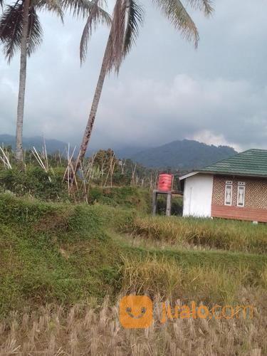 Murah Tanah Kavling Untuk Villa Di Lereng Gunung Burangrang Purwakarta (17185919) di Kab. Purwakarta