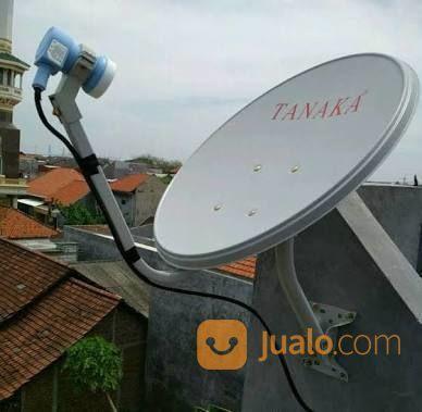 Paranola mini ninmedi antena 17898819