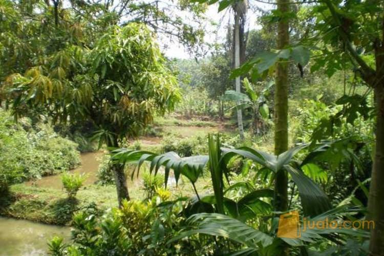 Dijual Tanah SHM Luas 2195 m2, Kemang, Pasir Gaok, Kota Bogor PR977 (1799420) di Kota Bogor