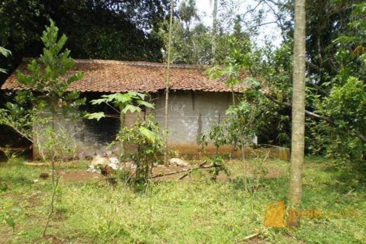 Dijual Tanah SHM Luas 2195 m2, Kemang, Pasir Gaok, Kota Bogor PR977 (1799421) di Kota Bogor