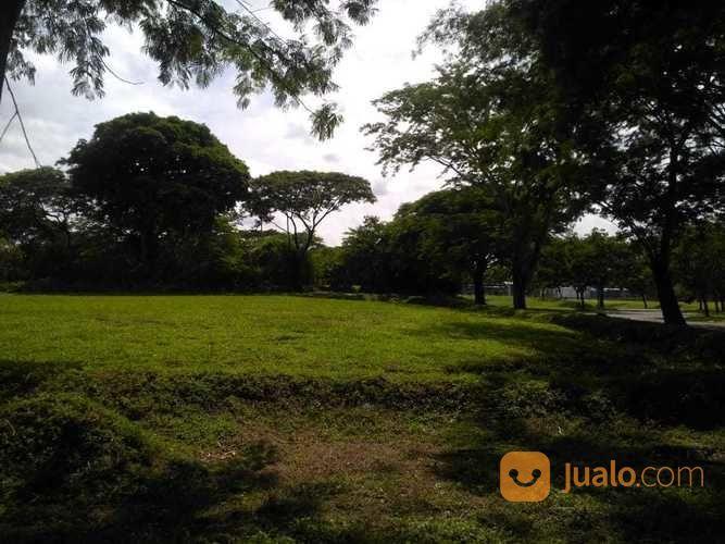 Tanah bukit golf hook tanah dijual 18049223