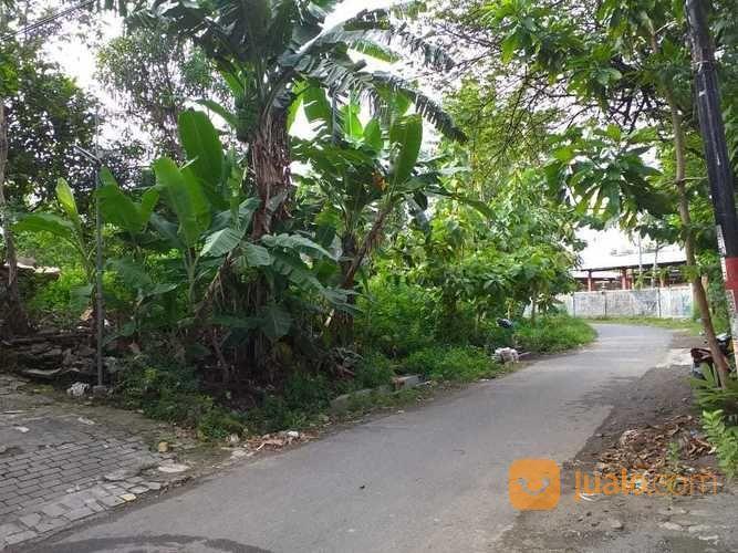 Best Deal Tanah Kost Hunian Investasi Di Umbulharjo Pusat Kota Jogja (18735435) di Kota Yogyakarta