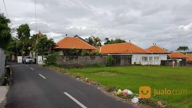 Tanah Umalas Kerobokan Bali Dkt Canggu Petitenget Batu Belig (18748035) di Kota Denpasar