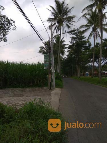 Tanah SHM Malang Kota 0 Jalan Diangsur 10 Bulan (18941403) di Kota Malang