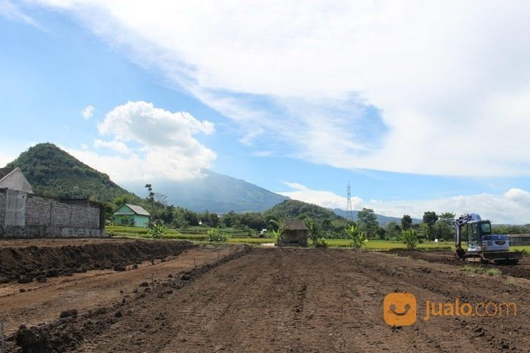 Tanah Kavling Siap Bangun 3 Menit Ke Jatimpark 3 Tanpa Bunga (19506423) di Kota Batu