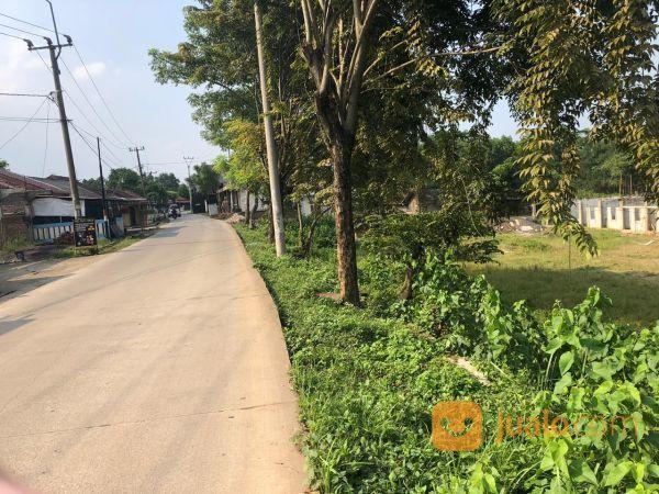 Tanah Pinggir Jalan Cicau, Kawasan Industri Cikarang P0930 (19757771) di Kab. Bekasi