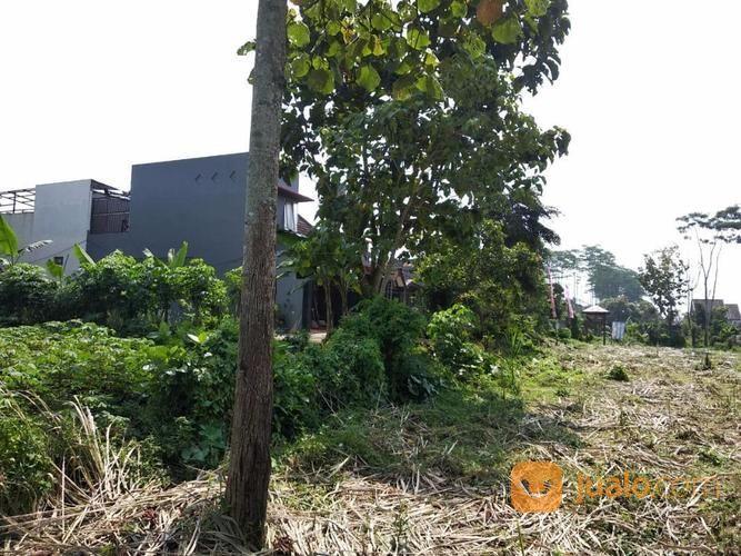 Tanah Kavling Murah Kota Malang (19920795) di Kota Malang
