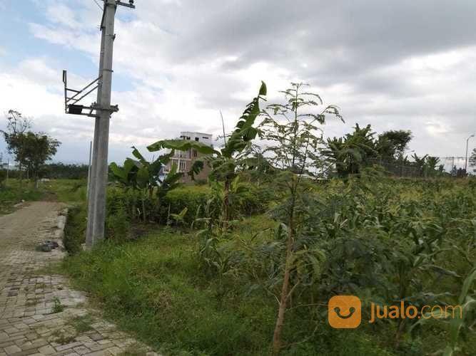 Promo Tanah Kavling Khusus Untuk 3 Pembeli Pertama (19921803) di Kota Malang