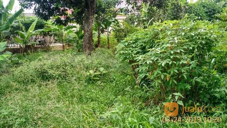 Tanah Bagus Setu Bahar Sukamaju Cilodong Depok (20130803) di Kota Depok