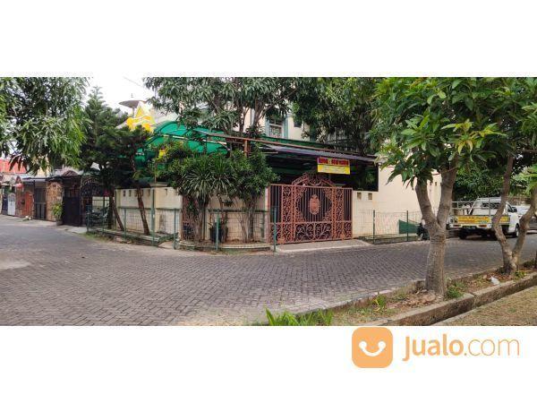 Rumah Hoex. PERMATA TAMAN PALEM LESTARI MP338 (20369815) di Kota Jakarta Barat