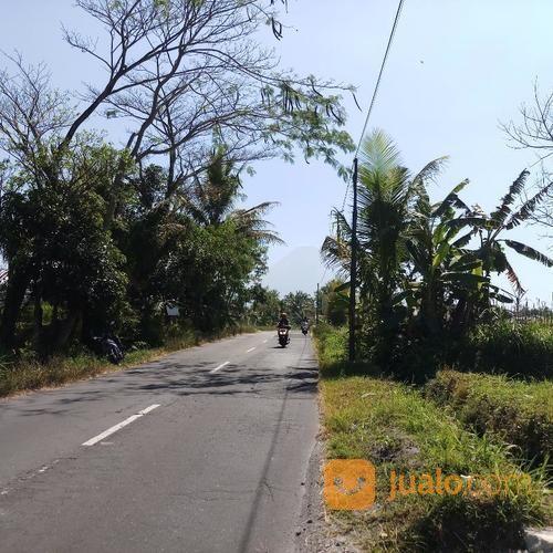 Tanah 2000 Meter Di Jalan Kaliurang Km 18 Sleman Yogyakarta (20597043) di Kab. Sleman