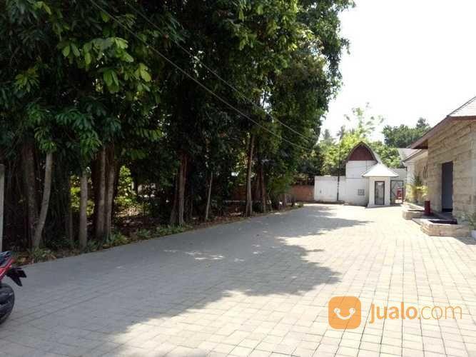Tanah Di Meninnting Cocok Untuk Hotel Dan Villa (20624291) di Kab. Lombok Barat