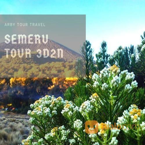 Paket Pendakian Gunung Semeru 3 Hari 2 Malam (20659579) di Kab. Sidoarjo