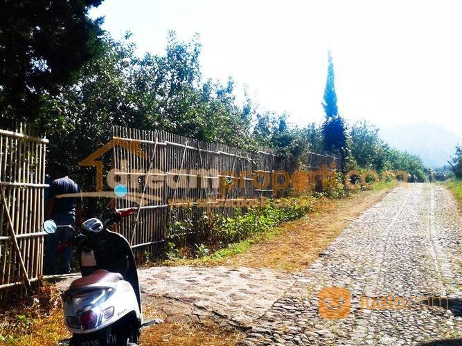DREAMPROPERTI   Kebun Produktif Desa Bulukerto Batu (20822343) di Kota Malang