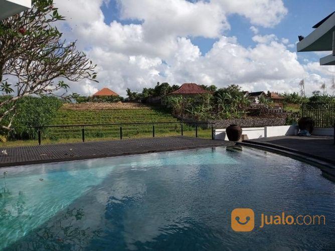 Villa Mewah Luas 1200 M2 Di Echo Beach Canggu Bali Kab Badung Jualo