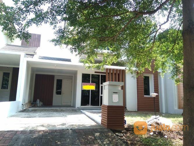 SEWA Rumah 2lt Graha Taman Pelangi (20938487) di Kota Semarang
