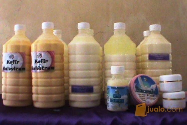 Ingin Sehat - Minum Kefir Original - Asli Omah Kefir Ungaran (211299) di Kota Semarang