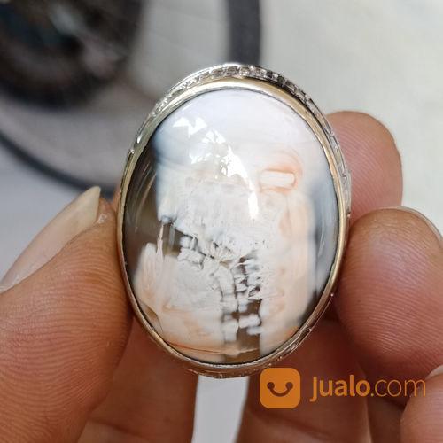 Natural Agate Gambar Kepala Tengkorak Antik (21377775) di Kota Pasuruan