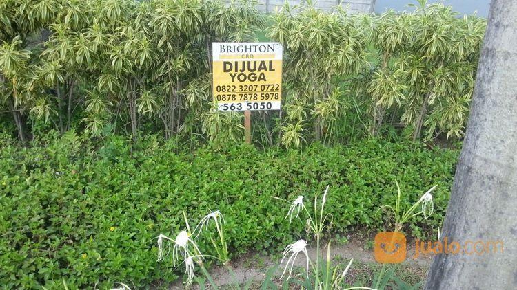 Kavling Citraland Raffles Garden Jalan Kembar (21697463) di Kota Surabaya