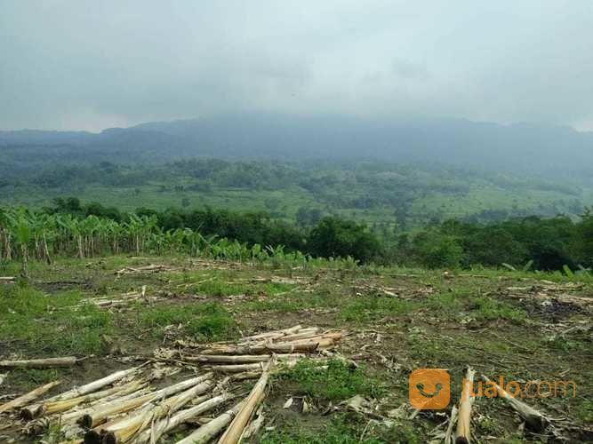 Tanah Super Murah.. Cocok Untuk Vila Dan Investasi