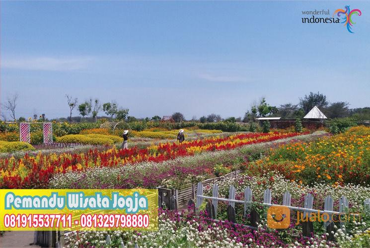 Pemandu Wisata Jogja - Trip Planer 081915537711 (21849827) di Kota Yogyakarta