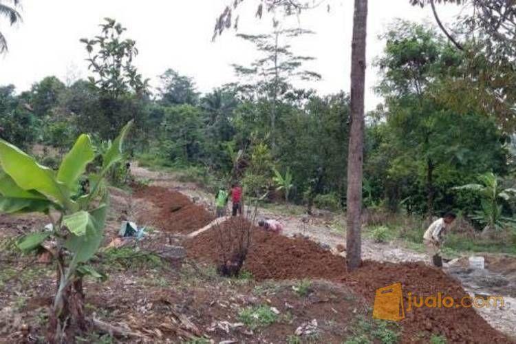 Tanah Kavling Sertifikat Siap Bangun Dekat IPB Dramaga Bogor MD470 (2216181) di Kota Bogor