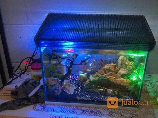 Aquarium Aquascape Fullset Bandung Jualo