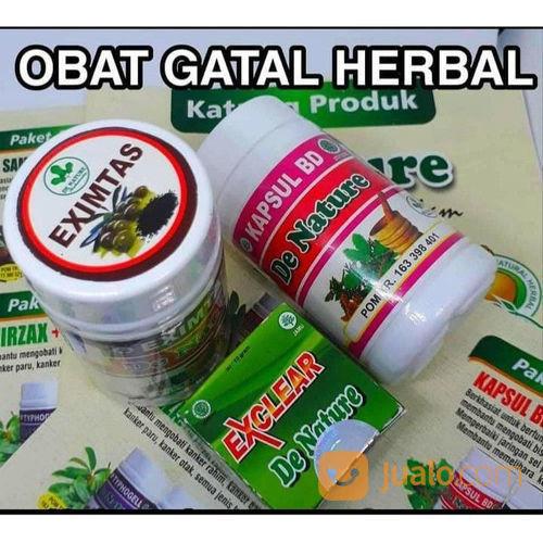 Paket obat exim esi nutrisi dan suplemen 22450511