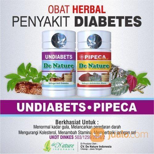 Paket obat diabetes terapi dan pengobatan 22450671