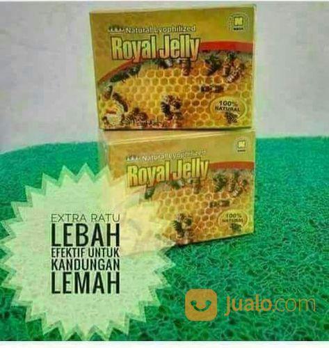 Natural Royal Jelly Nasa - Untuk Program Hamil - Agen Nasa Bekasi (22609675) di Kab. Bekasi