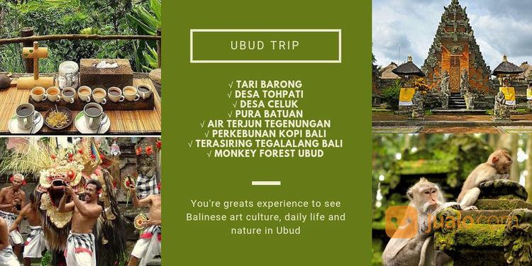 Paket Tour Ubud Bali Fullday (22637251) di Kota Denpasar