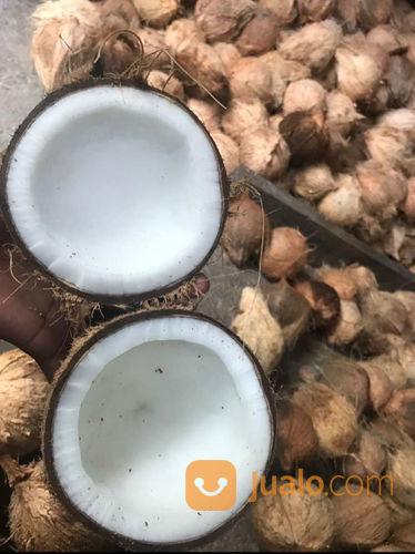 Kelapa tua santan perlengkapan industri 22782495